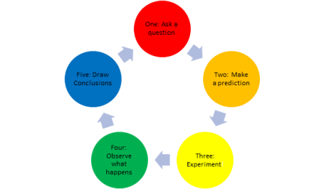 Scientific Method Graph